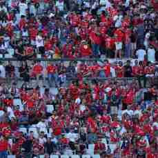 belenenses sad-benfica (44)