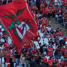 belenenses sad-benfica (45)