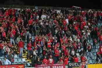 Santa Clara-Benfica Liga NOS (62)