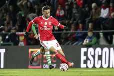 Covilha-Benfica Taca da Liga (21)