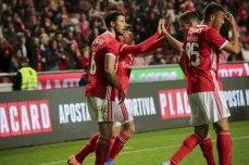 Benfica-Rio Ave Taca de Portugal (30)