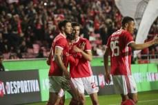 Benfica-Rio Ave Taca de Portugal (31)