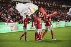 Benfica-Rio Ave Taca de Portugal (32)