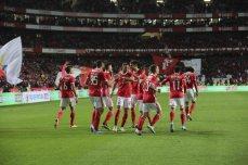 Benfica-Rio Ave Taca de Portugal (33)