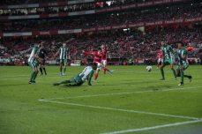Benfica-Rio Ave Taca de Portugal (36)