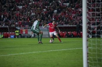 Benfica-Rio Ave Taca de Portugal (39)