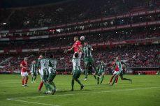 Benfica-Rio Ave Taca de Portugal (40)
