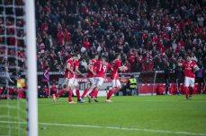 Benfica-Rio Ave Taca de Portugal (53)