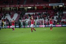 Benfica-Rio Ave Taca de Portugal (55)