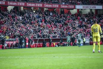 Benfica-Rio Ave Taca de Portugal (59)