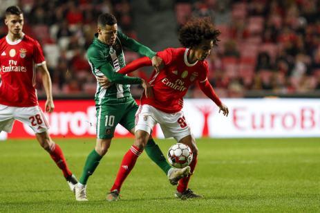 Benfica-Rio Ave Taca de Portugal (6)