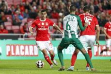 Benfica-Rio Ave Taca de Portugal (62)