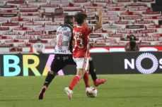 benfica-boavista-30-jornada-liga-nos (38)